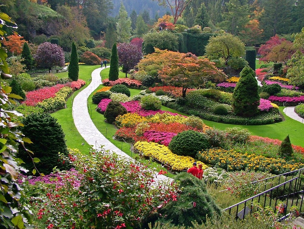 Butchart Gardens Victoria Bc In The Fall By
