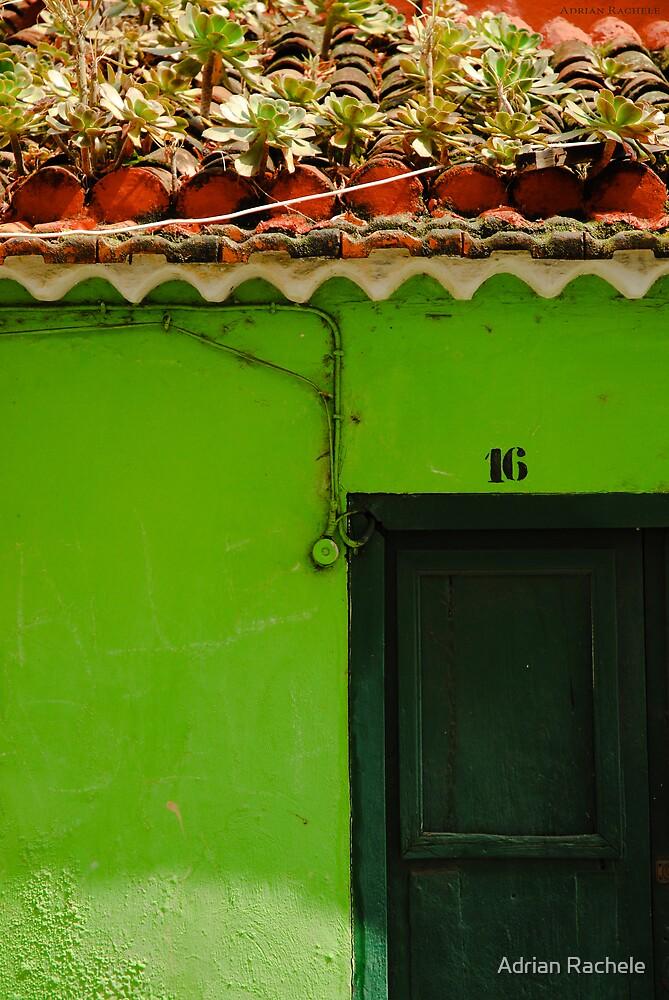 Santa Cruz Door 01 by Adrian Rachele