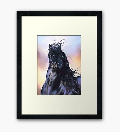 Friesian spirit Framed Print