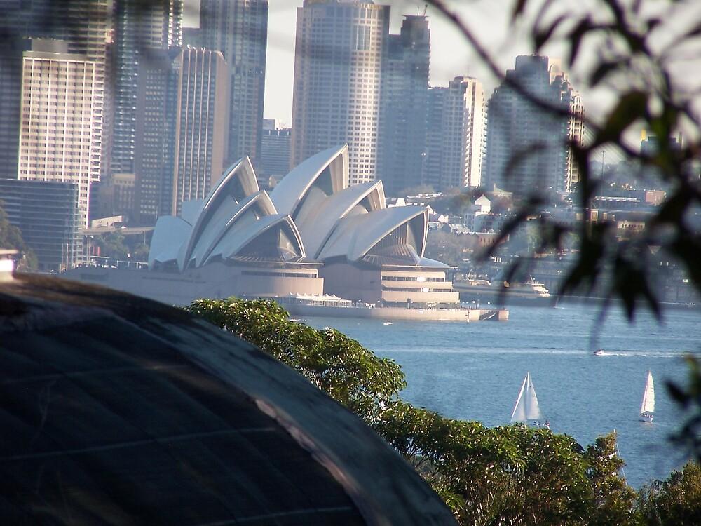 Sydney by Lissy