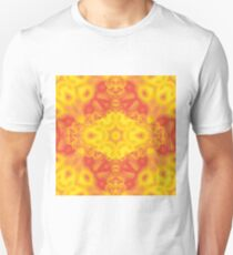Fire and ice fractal kaleidoscope T-Shirt