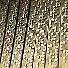 Gold Flaps at Docklands by RedB