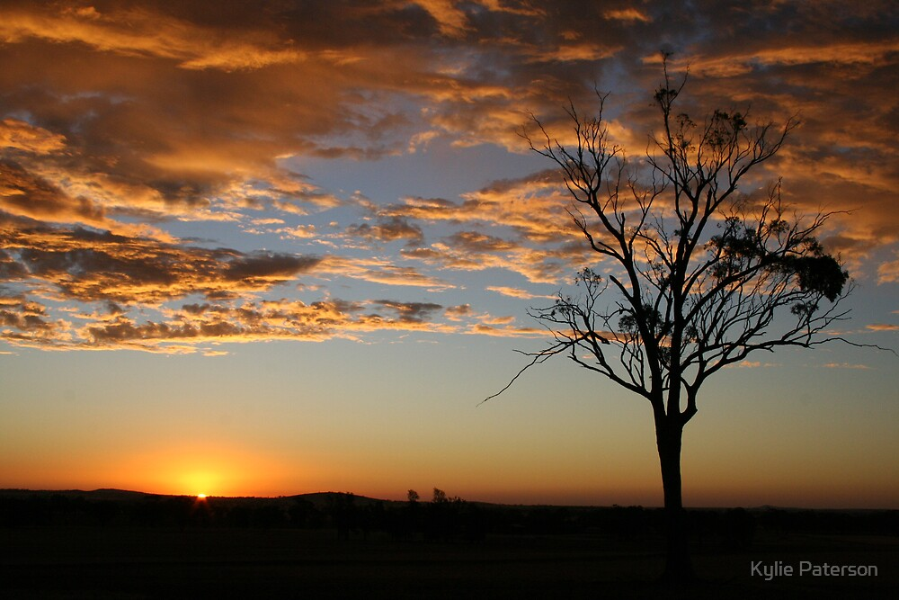 Sunset and Buckrabanyule 2 by Kylie Paterson