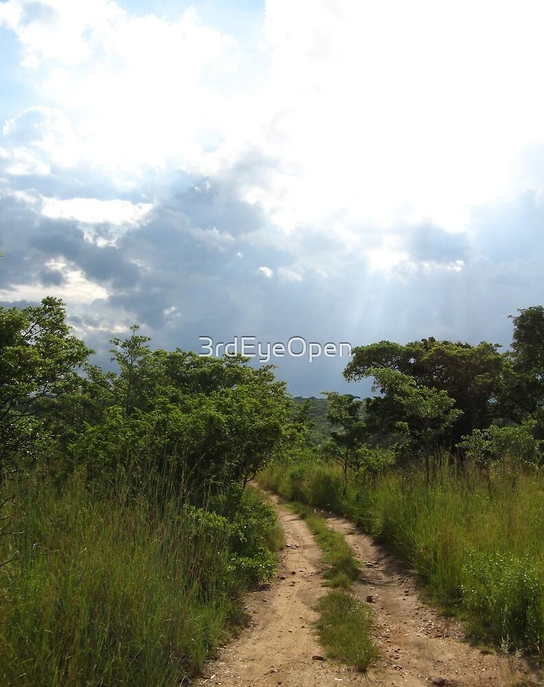 African Journey by 3rdEyeOpen