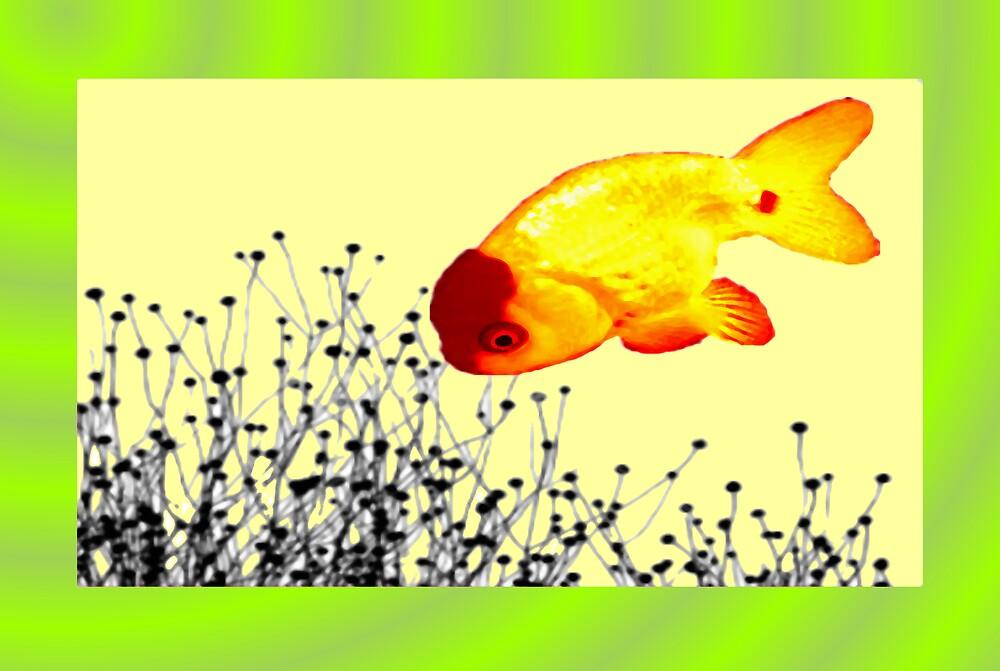 Bubble Fish by mantahay