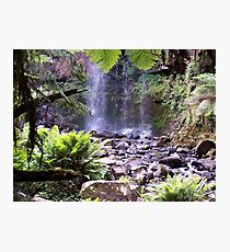 Paradise waterfall, photography Lissy Photographic Print