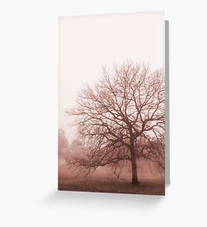 Hazy Morning Greeting Card
