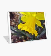 Downward Daffodil Laptop Skin