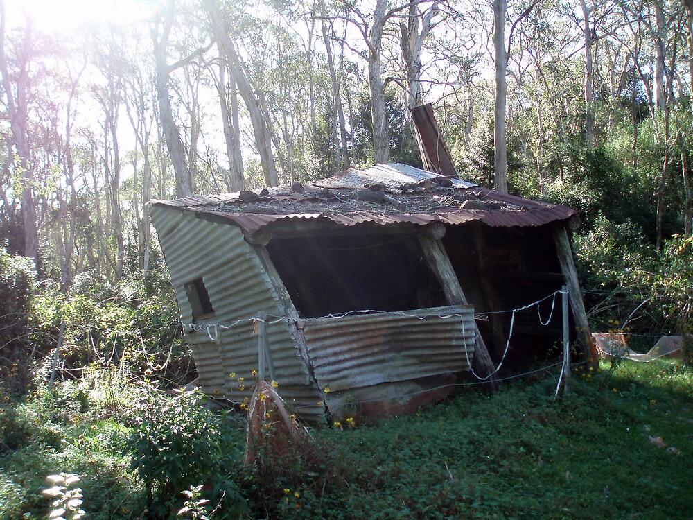 Carey's Hut - Barrington Tops by Paul Lamble