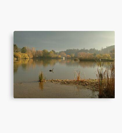 Autumn Fog, Lake Daylesford Canvas Print