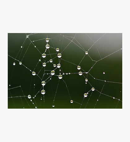 Interconnecting Balls Photographic Print