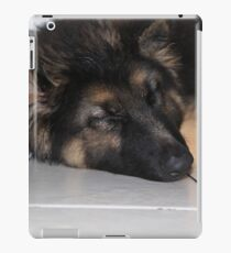 A Sleeping Bear iPad Case/Skin
