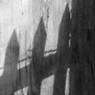 Shadows by Rebecca Wilcox
