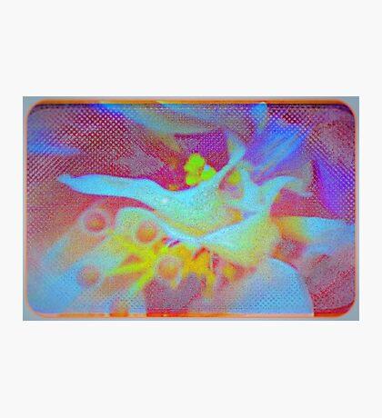 The inner hibiscus Photographic Print