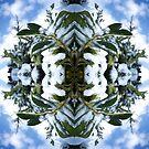 Snow Bow #3 by John Hill-Daniel