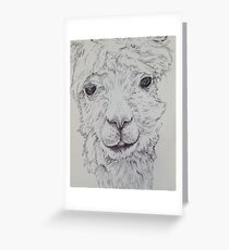 Alpaca in Black and White Greeting Card