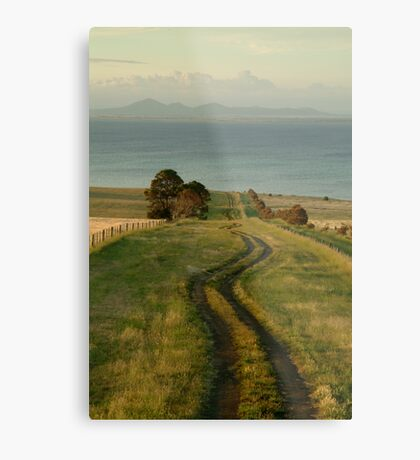 Spray Farm Lane Metal Print