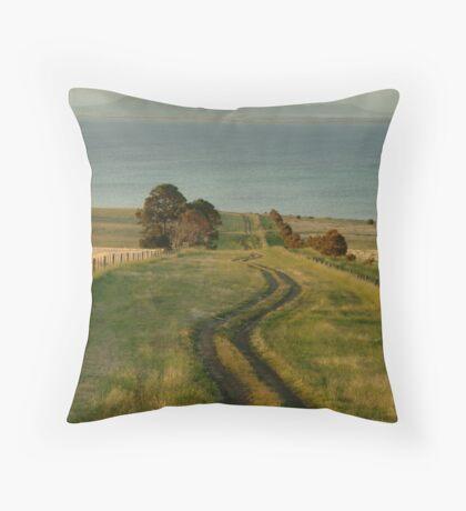 Spray Farm Lane Throw Pillow