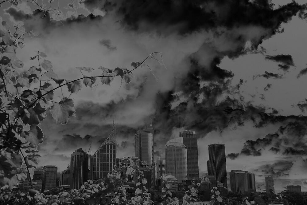 Solarised Sydney by Achim Casties