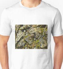 Coiled  Unisex T-Shirt