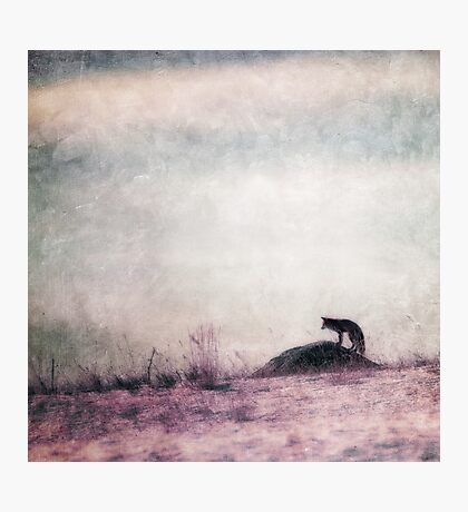 I only hear silence Photographic Print