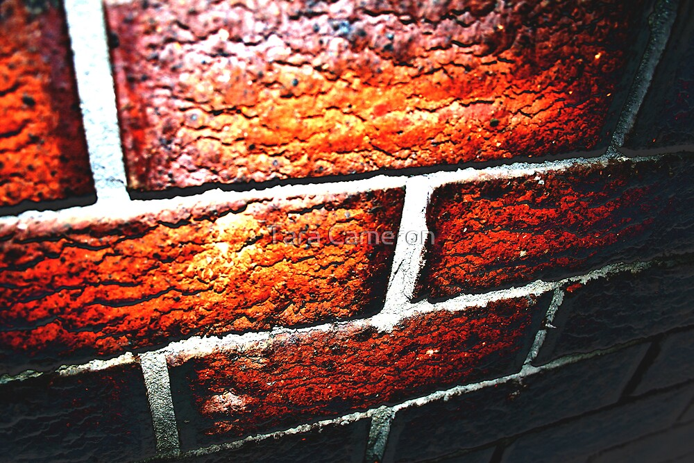 Brick by Tara Louise