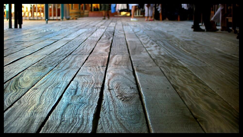 Boardwalk by Elana Halvorson