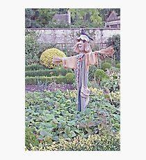 Scarecrow Photographic Print