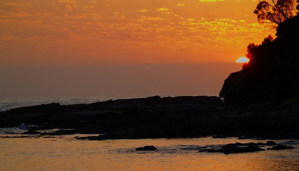 Sunrise  by pbdz22