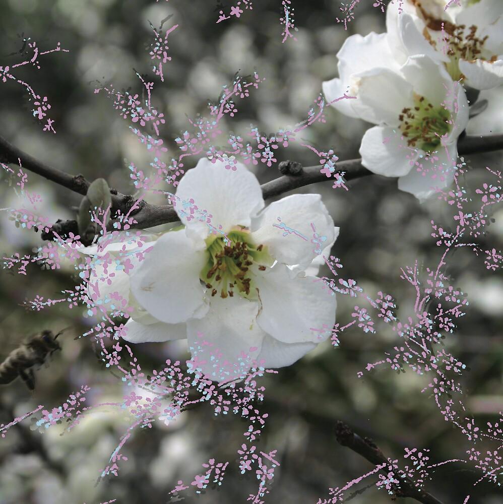Blossom & Bee by Lisa Pitman
