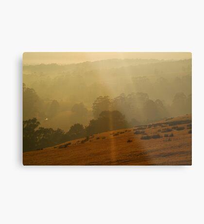 Otway Ranges Light Metal Print