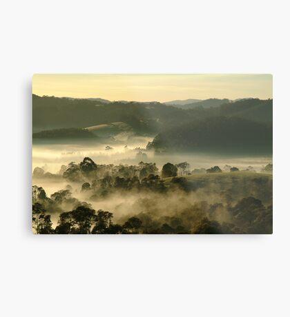 Valley Fog,Dollar, Gippsland Metal Print