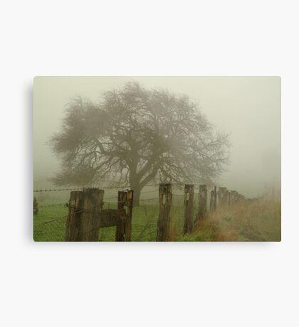 Foggy Morning, Macedon Ranges Metal Print