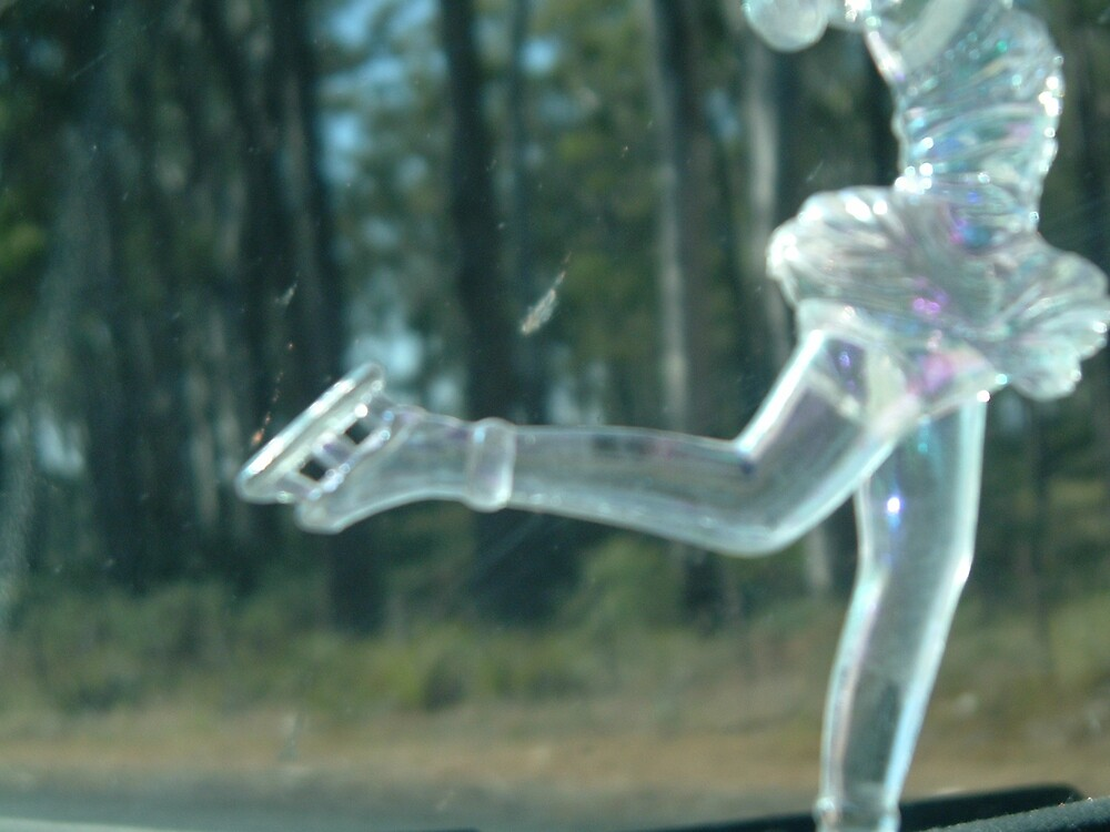 Figure Skating by Angela Barnard