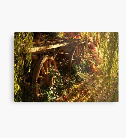 Cart  Metal Print