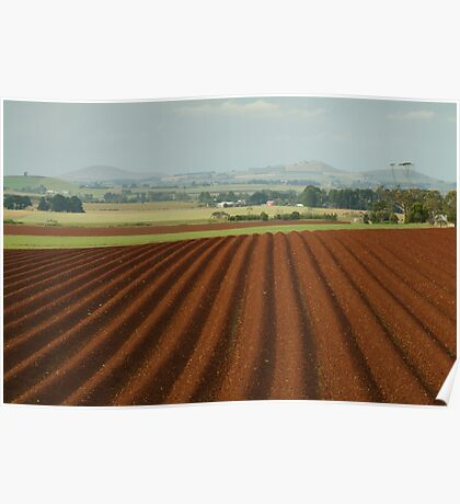 View to Seven Hills of Smeaton Poster
