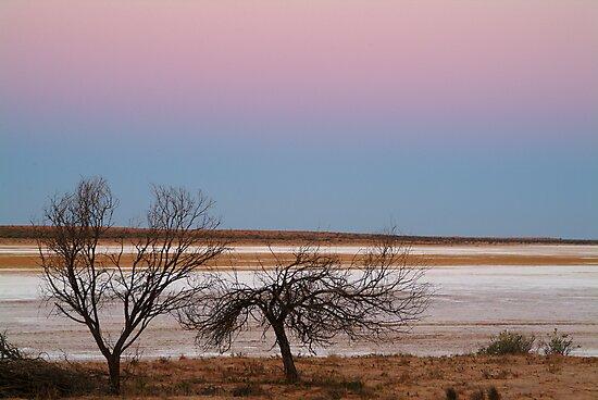 Salt Flats Simpson Desert,S.A. by Joe Mortelliti