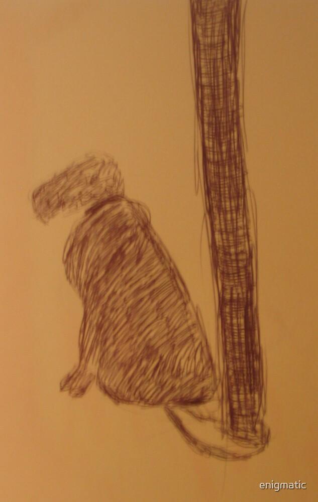 Dog by enigmatic