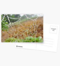 Spangled Spiderweb Postcards