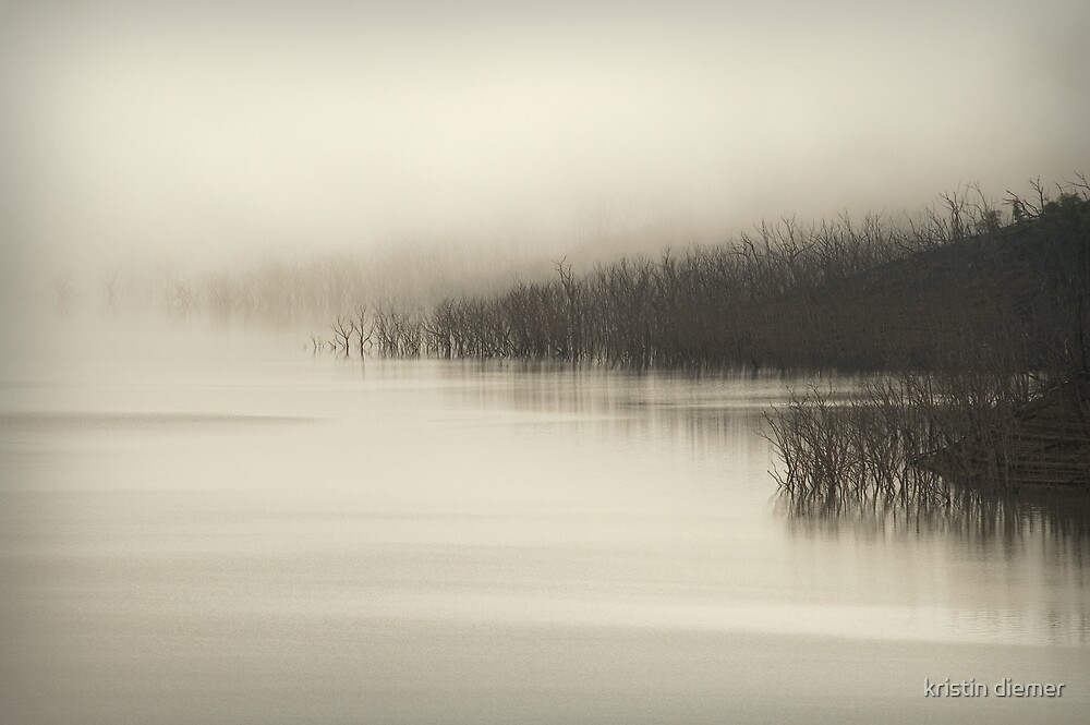 Morning fog by kristin diemer