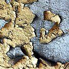 peeling paint by Jason Ross