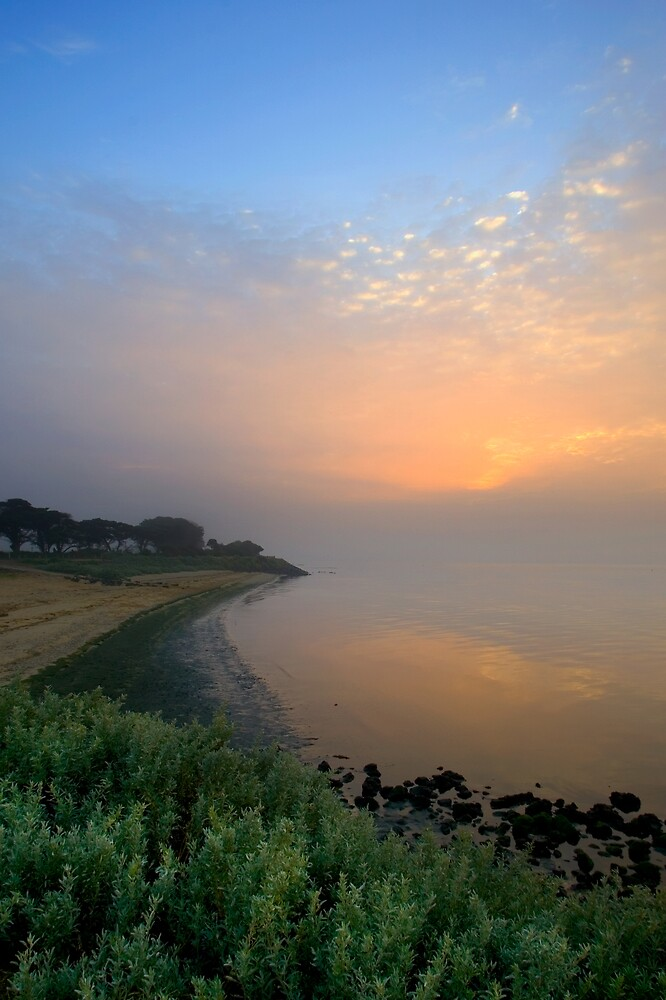 Fog at Dawn by RedChevy