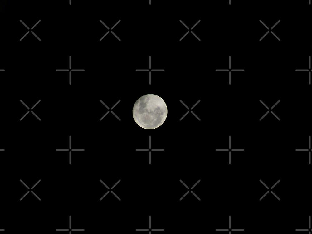 Full Moon in Night sky by Sandra Chung