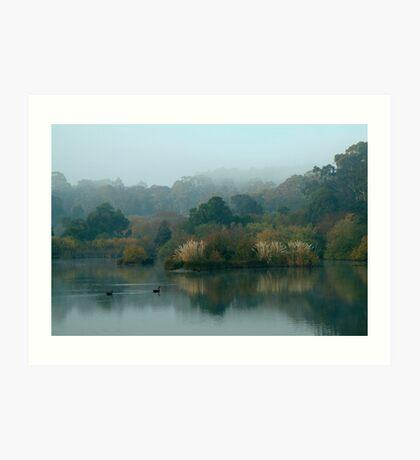 Morning, Lake Daylesford Art Print
