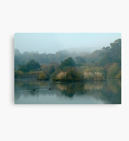 Morning, Lake Daylesford Metal Print