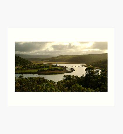 Glen Aire River, Otway Ranges Art Print