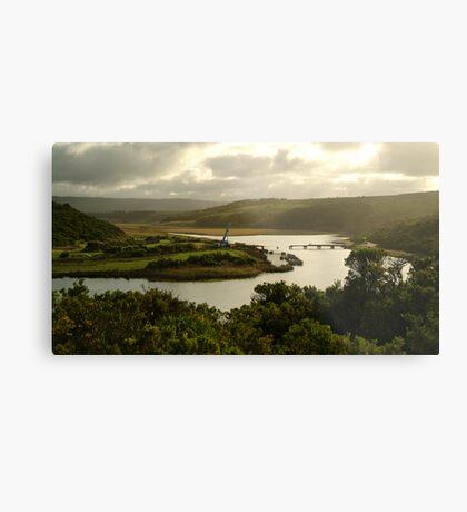 Glen Aire River, Otway Ranges Metal Print