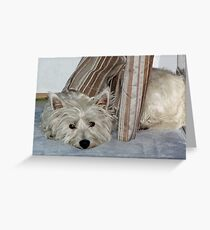 Maggie, bored, shower curtain Greeting Card
