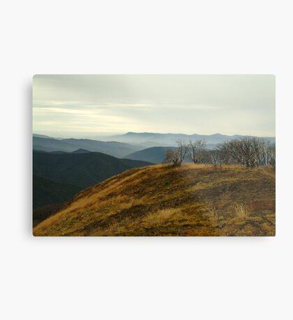 Top of Mt Blue Rag,High Country Metal Print