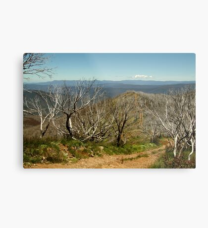 View from Mt Blue Rag,High Country Metal Print